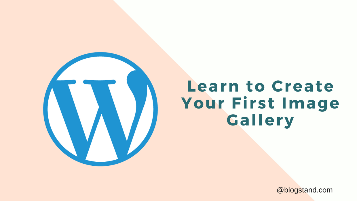 Learn to Create Your First Image Gallery